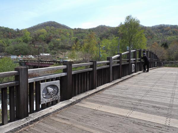 琴似発寒川にかかる木製の橋